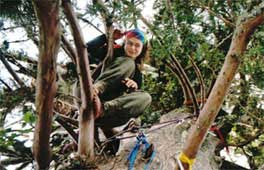 Julia in haar boom